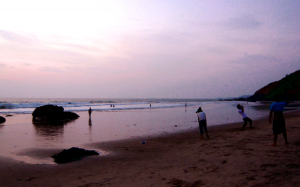 goa-perfectbeach1